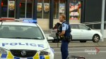 49 dead in New Zealand terror attack